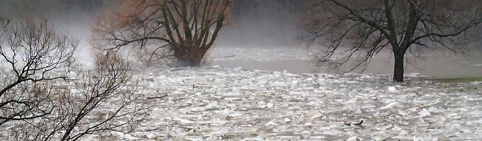 Flooded river covered in large chunks of ice
