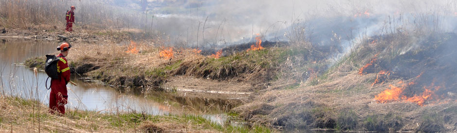 Professionals overseeing a prescribed burn at Snyder's Flats