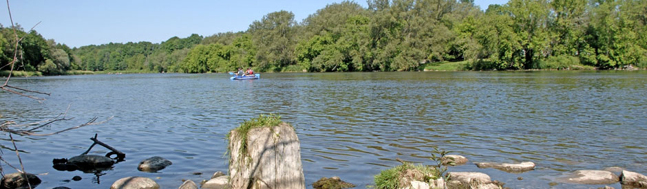 Canoes on Grand River in forested stretch