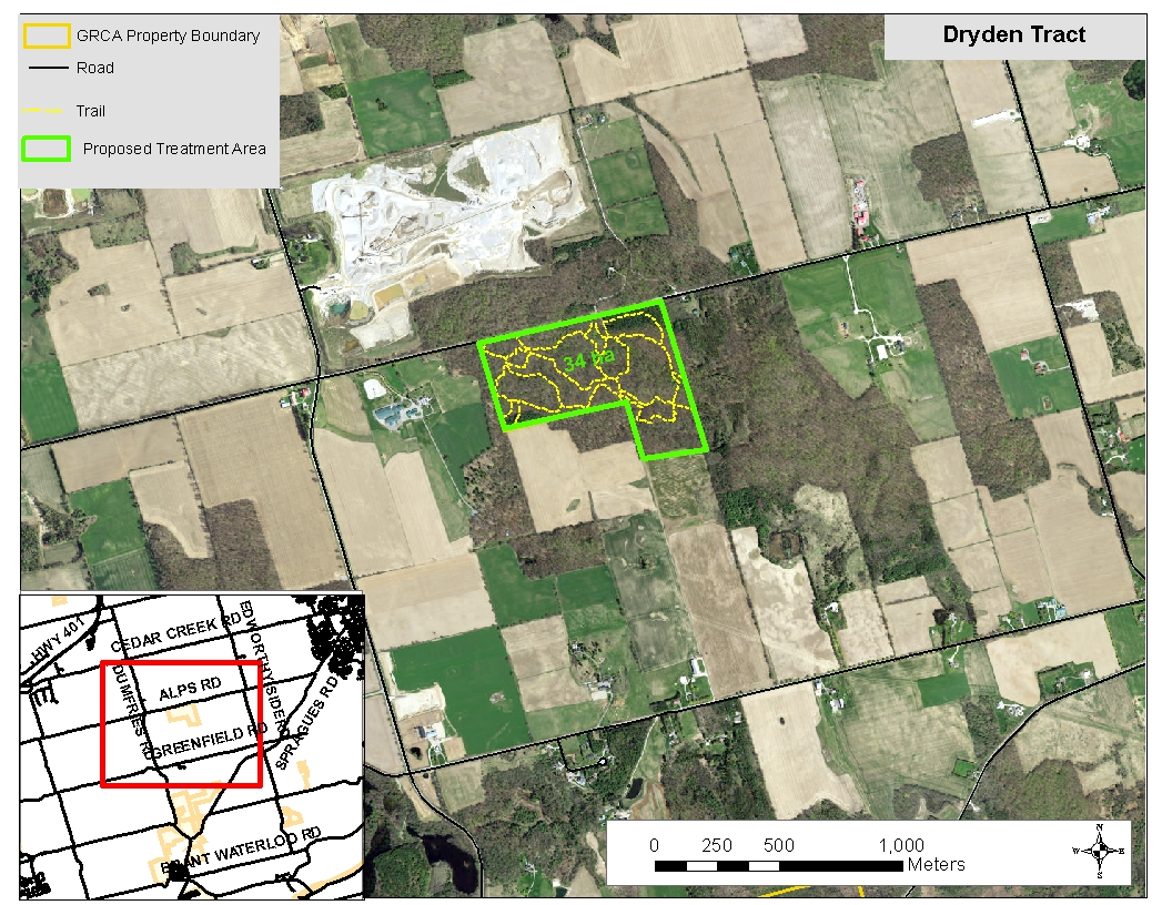 Dryden Tract Treatment Area