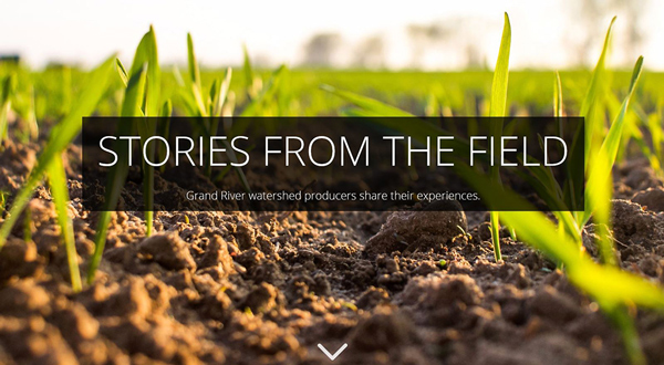 Open stories from the field application in new window