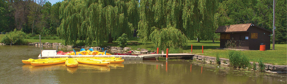 Yellow kayaks tied to dock at Byng Island Park on a summer day