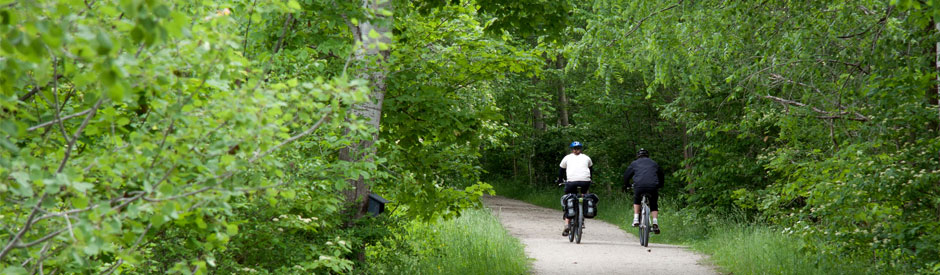 Cycling the Elora Cataract Trail with dense, green trees lining the trail.