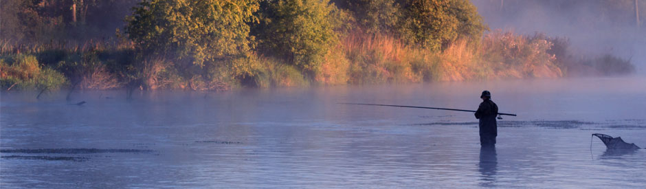 Flyfishing in the river, at dawn