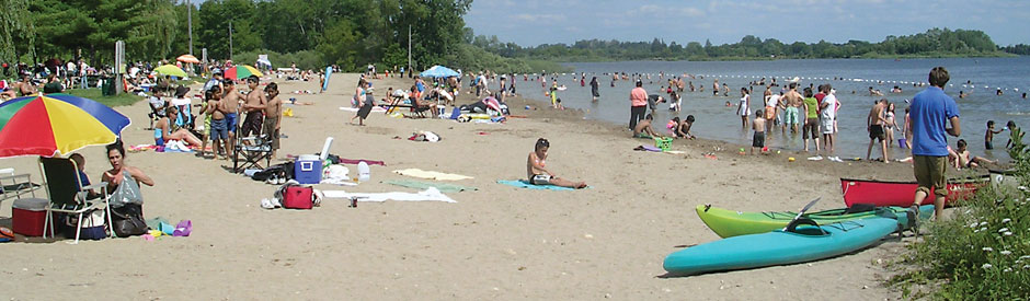 Many people enjoying the beach at Guelph Lake on a summer day