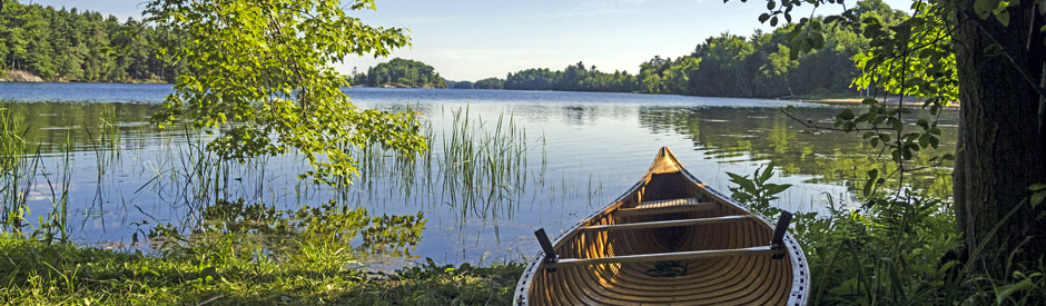 Scenic view of canoe on shore of lake