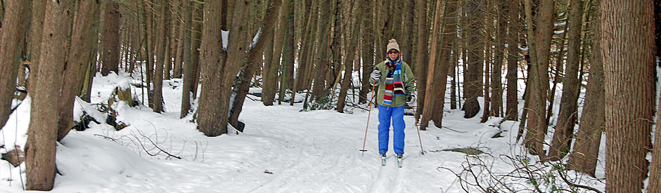 Woman cross-country skiing in forest