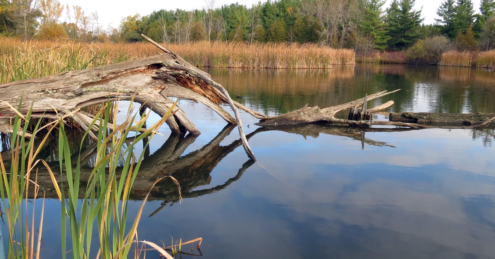 Map Your Property - Grand River Conservation Authority